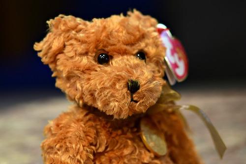 Beanie Baby Bear